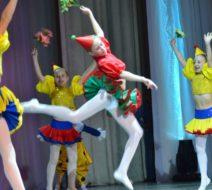 Отчётный-концерт-2014-г._59